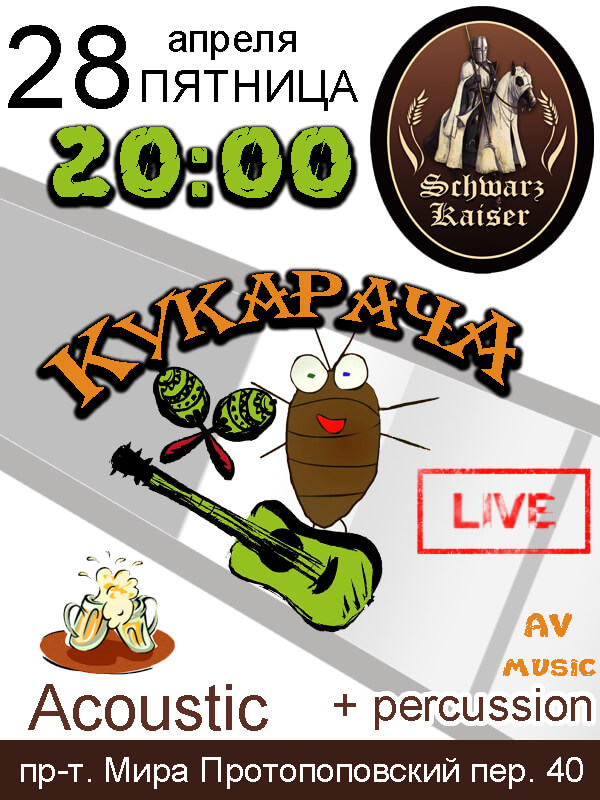 Schwarz Kaizer, acoustic, concert, live music, Av-music, kukaracha, rock, rap, pivo, myaso, rock-n-roll, moscow, afisha2